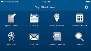 icons for city services on mobile app