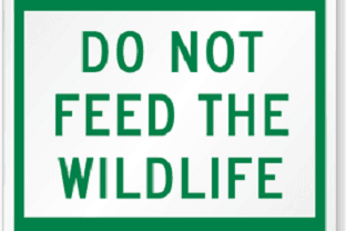 Do-Not-Feed-Wildlife-Sign